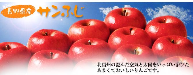お歳暮 りんご ギフト