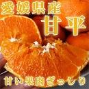 みかん 甘平 柑橘 愛媛