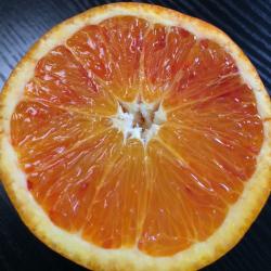 愛媛県産 ブラッドオレンジ