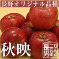 りんご 秋映 あきばえ 信州 長野