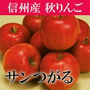 りんご サンつがる つがる 信州 長野