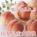 桃 山梨 水蜜桃